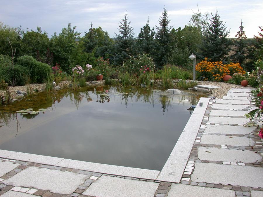 Schwimmteich und Staudenbepflanzung